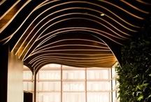 Ceiling / by Diane Karwoski