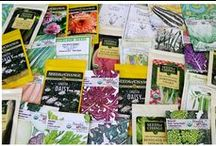 Garden Planning / The decisions we make in the dark, dreary days of winter could make the difference between a good garden and a great garden come spring. Our tips and techniques will help you get ready for your best growing season ever! / by Organic Gardening