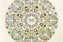 Zentangles / by Mckenzie Davis
