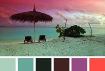 Colors / by Diane Karwoski