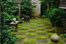 Garden paths and stones / Garden paths and stones / by Mickey Myers