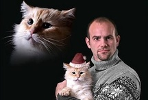 Holiday humor / by Melissa Robinson