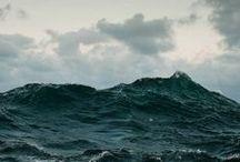Born of the sea / by Morgan Koch
