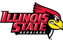 Information About Me / I am a Senior Marketing sutdent at Illinois State University / by Lindsey Johnson