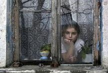 Photography   Through Glass / by Andee