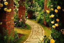 GARDENS & PATHWAYS / Natural Beauty / by Marilyn M.