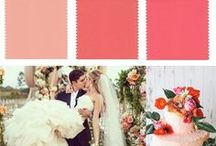 Wedding Color Inspiration - Coral / by Bows-N-Ties .com