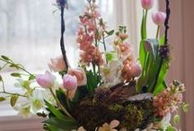 Floral design 2 / by Mada Vorster