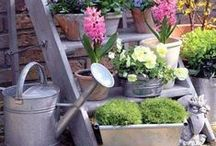 accessories: garden / by in love with interior design