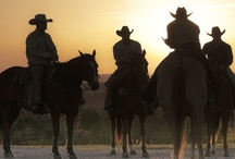 Ranches and Rodeos / If you're looking for a break from the thrills of the big city, Texas has over 70 guest and working ranches that offer visitors a taste of the cowboy way of life.  / by Texas Tourism