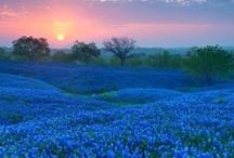 Travelin' Texas / by Texas Tourism