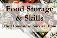 Food Storage / A fully stocked food storage pantry with at least 6 months of food stored in a dry cool environment should be a priority for each family. Why ? Stocking up in bulk at lower prices, saves money in the long run.  If you lose your job or spouse, a fully stocked pantry will help financially. In case of a natural disaster, you will not have to venture out of your home for supplies. / by The Homestead Survival