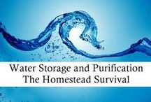 Water Storage and Purification - The Homestead Survival / by The Homestead Survival