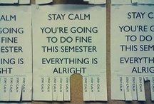 .student life. / by Caity Kirschbaum