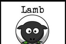 Lamb Recipes / paleo, gluten-free, and grain-free recipes containing lamb / by Cavegirl Cuisine