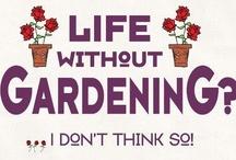 Gardening Favorites / by Carol Austin