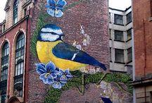Mcr ❤️ / My home town Manchester, Uk / by Helen Kennerk