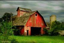 barns / by Marylene Lynx
