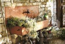 For the garden / by Marylene Lynx