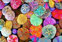 colors / by Marylene Lynx
