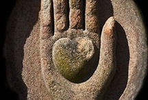 Hands / by Jennifer Blevins