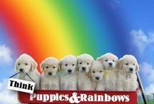 lisa loves PUPPIES / by Lisa Loves Rainbows