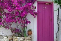 Doors / by Patricia Hanning