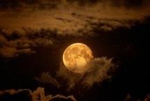 sky gazing / by Robin Neher