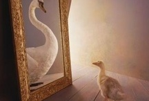 through the looking glass / by Robin Neher