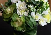 Amazing Florals  / Beautiful living art  / by Nancy Mamchur @ La Rouge Interiors