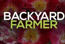 BYF Segments / by Backyard Farmer