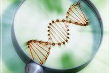 Genetic Genealogy / by Claiming Kin