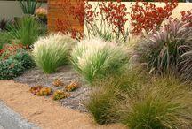 Garden Stuff / by Dana Dailey-Glenn
