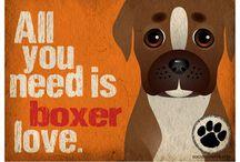 Dog Lover / by Jordan Reardon