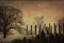 Ghosts of the South / by Jennifer Cox