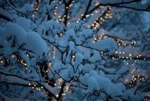Winter Wonderland / by Makayla Davis