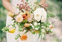 pretty blooms  / by Betsy Watts
