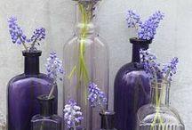 Decorating with Purple / Decorating with purple. / by Planet Weidknecht