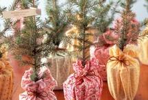 Holiday Inspiration / by Kayla DuBois // Juneberry Events