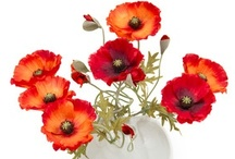 PAINTING IDEAS (FLOWERS) / by Lynne Thompson