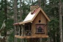 Birdhouses and Feeders / by Lisa Allard