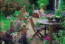 Garden & Outdoor Ideas / by Jackie Schaming-Caruso