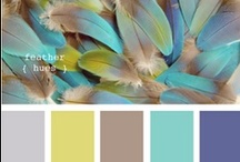 Colour Inspiration Mood Board  / by Lisa Agnew