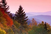 Where my heart is / Missing home... #828 #wnc / by Carrie Long