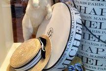 Oh, CHAPEAUX! / Hats, hats, hats!! / by Diane Blair