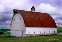 Barns Buildings & Churches / by Corinne