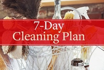 Cleaning Tips / by Diana Shires