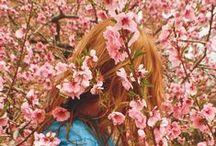 spring time / by Kellie Alge