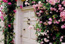 { My Secret Garden } / by Brittany Kyles