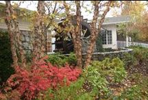 Watermill Gardens in Autumn / Autumn on Long Island brings crisp weather and colorful foliage.  Experience the best of Autumn at the Watermill / by Watermill Caterers